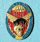 Italien-Abzeichen-fuer-Fallschirmjaeger-Regimentsabzeichen-OLTRE-LA-MORTE